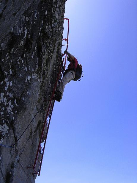 Foto: Andreas Koller / Klettersteig Tour / Via ferrata Angelino (1701 m) / Leicht überhängende Leiter / 16.07.2009 23:17:45