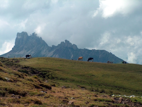 Foto: barbonis / Mountainbike Tour / Alpe di Siusi / 16.07.2009 18:46:54