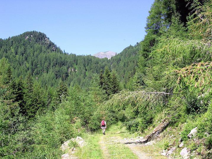 Foto: Andreas Koller / Wander Tour / Schöderkogel über S-Grat und NW-Grat (2500m) / 18.07.2009 20:04:59