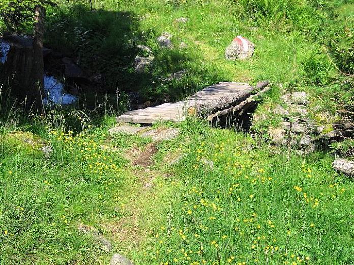 Foto: Andreas Koller / Wander Tour / Schöderkogel über S-Grat und NW-Grat (2500m) / 18.07.2009 20:04:39