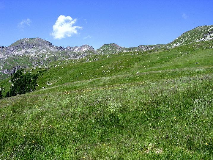 Foto: Andreas Koller / Wander Tour / Schöderkogel über S-Grat und NW-Grat (2500m) / 18.07.2009 20:03:06
