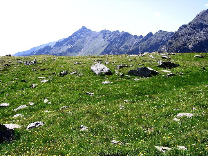 Foto: Andreas Koller / Wander Tour / Schöderkogel über S-Grat und NW-Grat (2500m) / Blick zum Schöder Eisenhut (2456 m) / 18.07.2009 20:02:42