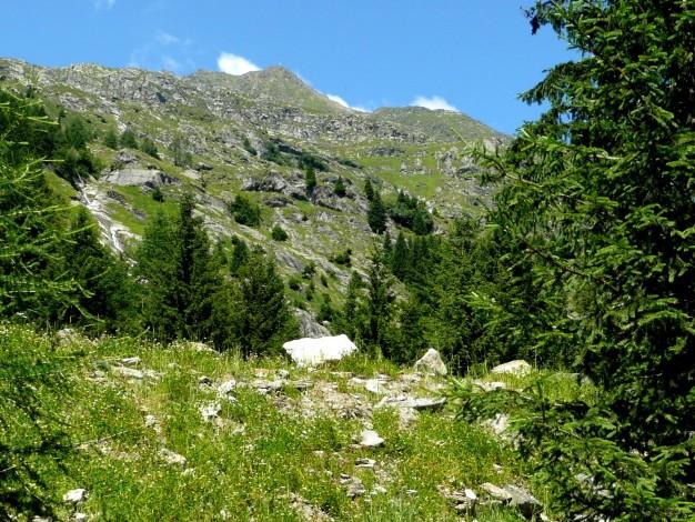Foto: Manfred Karl / Wander Tour / Durch das Zieltal zur Lodnerhütte / 31.08.2009 14:59:56