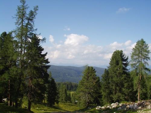 Foto: hofchri / Mountainbike Tour / Stoderzinken (2048  m) von Gröbming / 18.07.2009 16:59:40