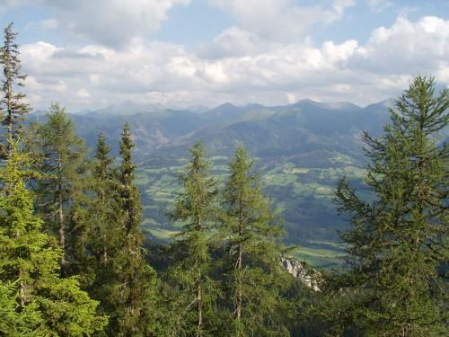 Foto: hofchri / Mountainbike Tour / Stoderzinken (2048  m) von Gröbming / 18.07.2009 16:59:55