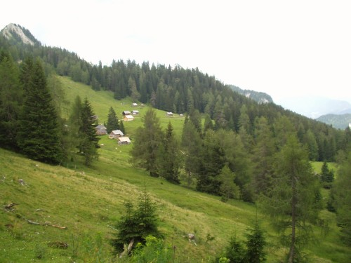 Foto: hofchri / Mountainbike Tour / Rund um den Hechlstein über Hochtor (1560 m) / Auffahrt zur Stoiringalm / 18.07.2009 17:09:44