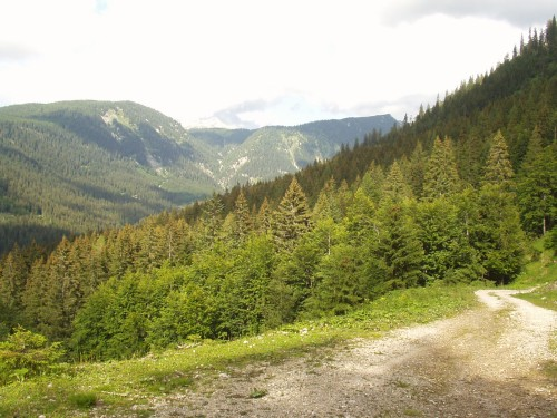 Foto: hofchri / Mountainbike Tour / Rund um den Hechlstein über Hochtor (1560 m) / im Gnanitztal / 18.07.2009 17:11:12