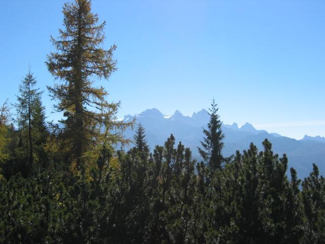 Foto: pepi4813 / Wander Tour / Über die Kalmberg Alm auf die Kalmberge / Blick von der Kalmbergalm zum Dachstein / 18.07.2009 21:09:05