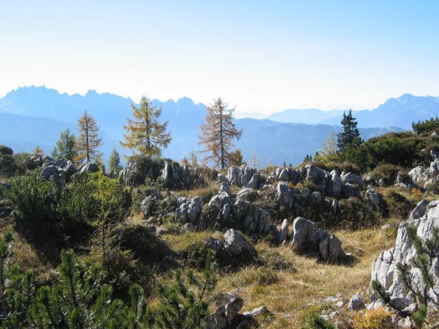 Foto: pepi4813 / Wander Tour / Über die Kalmberg Alm auf die Kalmberge / Aufstieg von der Kalmbergalm / 18.07.2009 21:09:37