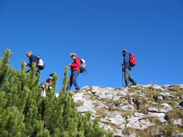 Foto: pepi4813 / Wander Tour / Über die Kalmberg Alm auf die Kalmberge / Abstiegsweg zur Goiserer Hütte / 18.07.2009 21:11:27