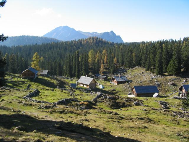 Foto: pepi4813 / Wander Tour / Über die Kalmberg Alm auf die Kalmberge / Abstieg zur Iglmoos Alm / 18.07.2009 21:17:23