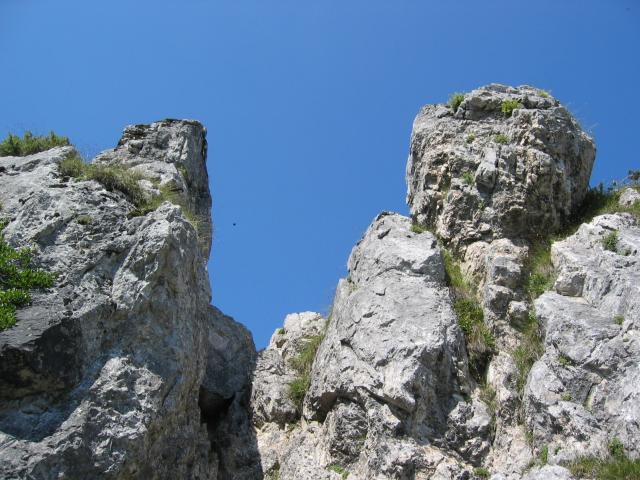 Foto: pepi4813 / Wander Tour / Von der Gasslhöhle zum Gasslkogel / Aufstieg zum Gipfel / 19.07.2009 11:17:24