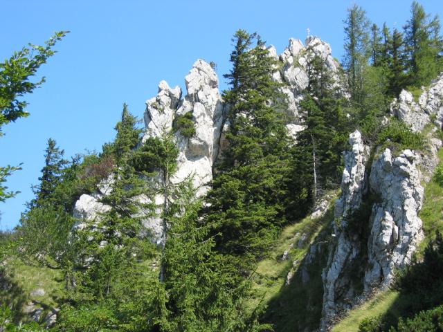Foto: pepi4813 / Wander Tour / Von der Gasslhöhle zum Gasslkogel / Blick zum Gasslkogel / 19.07.2009 11:16:04