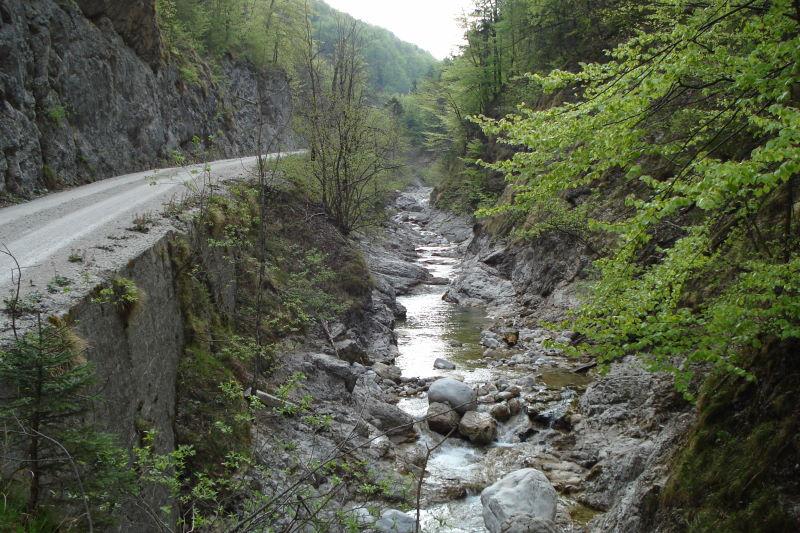 Foto: Günter Siegl / Wander Tour / Von der Gasslhöhle zum Gasslkogel / Herrliche Wanderung neben dem Bach / 24.04.2011 18:06:44