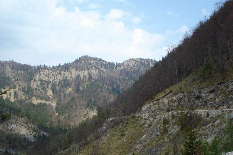 Foto: Günter Siegl / Wander Tour / Von der Gasslhöhle zum Gasslkogel / Gaßlkogel / 24.04.2011 18:07:09