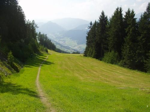 Foto: hofchri / Mountainbike Tour / Planai (1906 m) von Schladming mit Downhillstrecke / der leichtere Trail im oberen Abschnitt / 11.08.2009 20:32:46