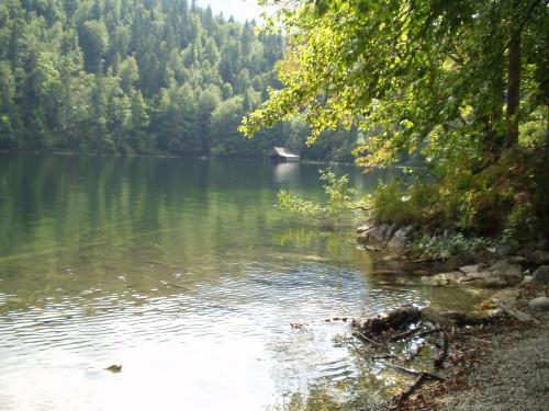 Foto: hofsab / Mountainbike Tour / Ausseer Seentour über Klaushöfl (1198 m) / der Toplitzsee / 26.08.2009 12:35:21