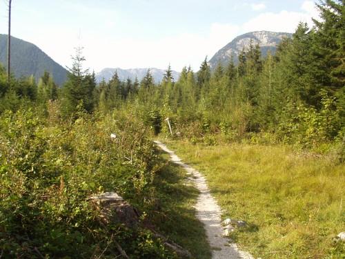 Foto: hofsab / Mountainbike Tour / Ausseer Seentour über Klaushöfl (1198 m) / kurzer Wanderweg am Sattel / 26.08.2009 12:37:04