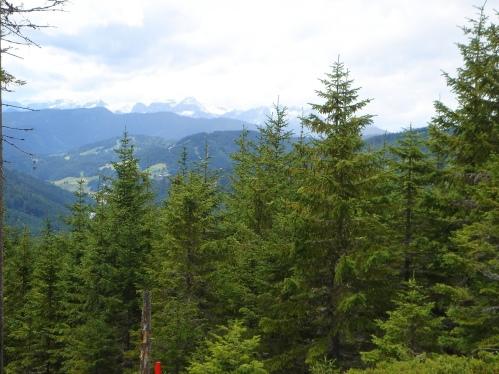 Foto: hanna84 / Wander Tour / Auf den Rittisberg / 20.07.2009 20:52:16