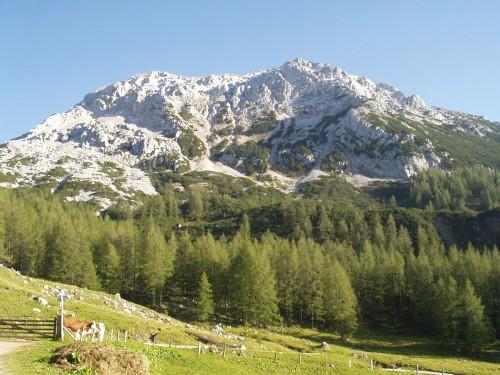 Foto: hofsab / Mountainbike Tour / Filmooser Almentour über Hofalmen und Sulzenalm (1612 m) / der Rötelstein / 26.08.2009 12:44:32