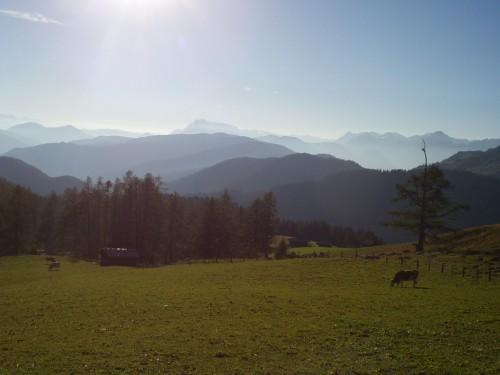 Foto: hofsab / Mountainbike Tour / Filmooser Almentour über Hofalmen und Sulzenalm (1612 m) / 26.08.2009 12:44:37