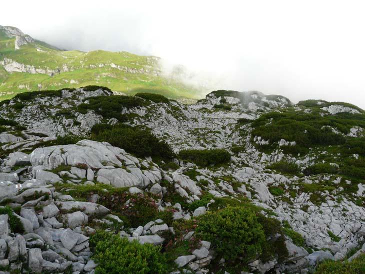 Foto: vince 51 / Wander Tour / Erdgeschichtliche Rundwanderung / Im Steinernen Meer / 22.07.2009 22:08:09