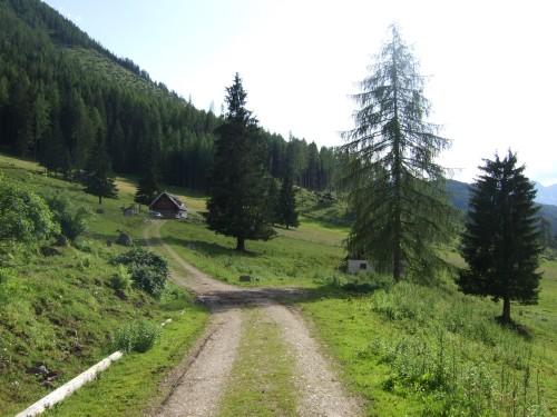 Foto: hofsab / Mountainbike Tour / Huttererböden (1404 m) von Hinterstoder über Steyerbergerreith / der Weg zur Alm Steyersbergerreith / 25.08.2009 13:06:56