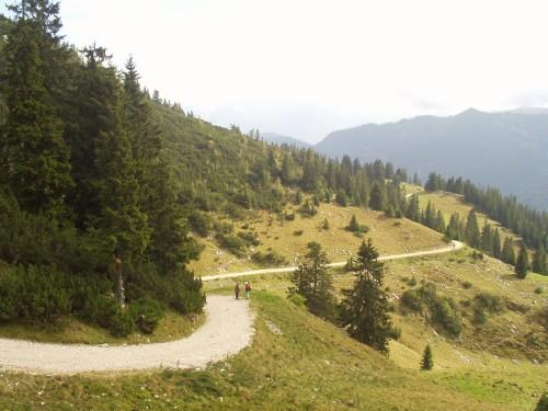 Foto: hofsab / Mountainbike Tour / Rund um und auf den Rauschberg (1645 m) / steile Rampe auf den Rauschberg / 26.08.2009 12:50:15