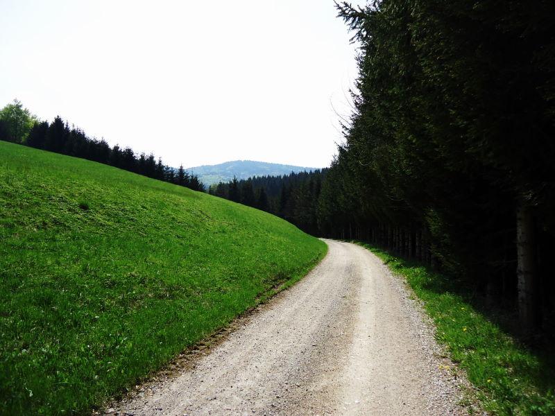 Foto: Günter Siegl / Wander Tour / Von Oberwang auf die Kulmspitze / 03.05.2015 13:23:46