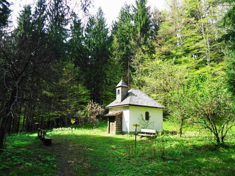 Foto: Günter Siegl / Wander Tour / Von Oberwang auf die Kulmspitze / Radstatt / 03.05.2015 13:22:50