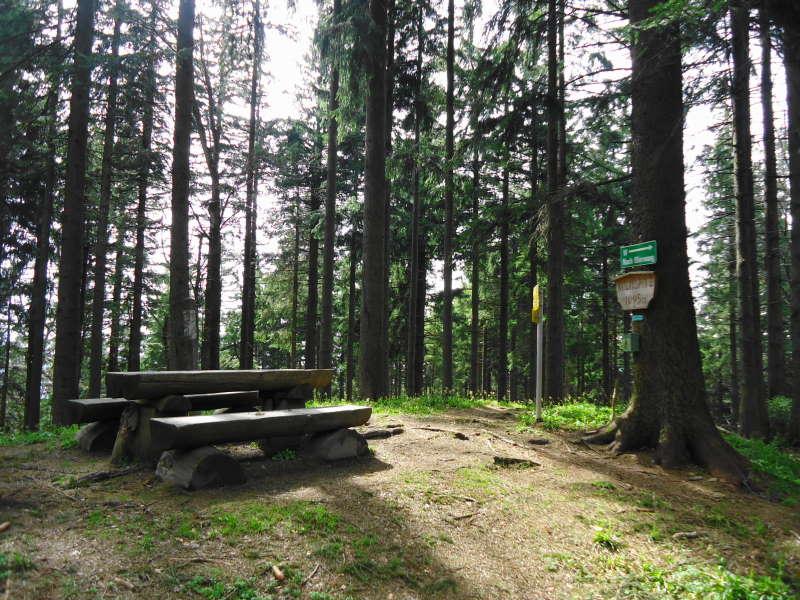 Foto: Günter Siegl / Wander Tour / Von Oberwang auf die Kulmspitze / Gipfel Kulmspitze / 03.05.2015 13:19:55