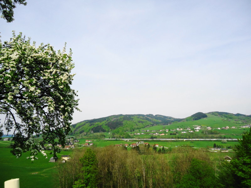 Foto: Günter Siegl / Wander Tour / Von Oberwang auf die Kulmspitze / Blick zum Rossmoos / 03.05.2015 13:17:56