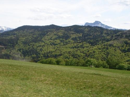 Foto: hanna84 / Wander Tour / Von Oberwang auf die Kulmspitze / Kulmspitze und Schafberg, der hinter dem Radstattrücken hervorlugt / 24.07.2009 20:24:36