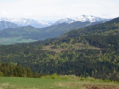 Foto: hanna84 / Wander Tour / Von Oberwang auf die Kulmspitze / Hohe Schrott und Zimnitz / 24.07.2009 20:23:28