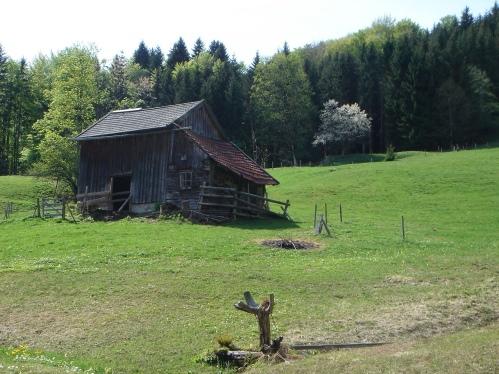 Foto: hanna84 / Wander Tour / Von Oberwang auf die Kulmspitze / 24.07.2009 20:20:37