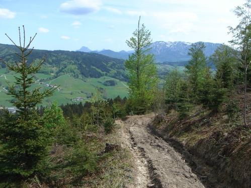 Foto: hanna84 / Wander Tour / Von Oberwang auf die Kulmspitze / 24.07.2009 20:28:49