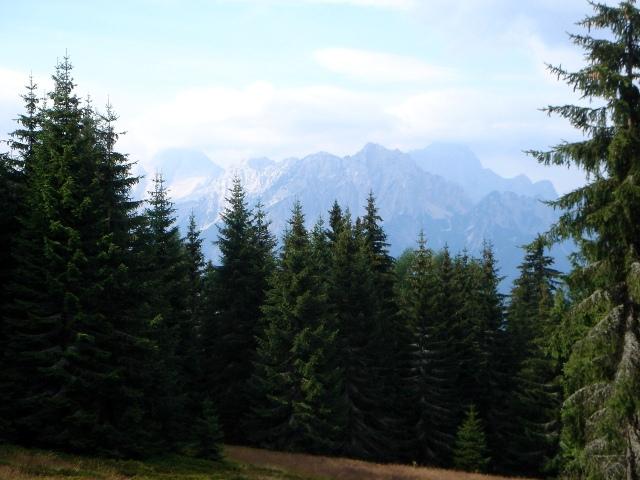 Foto: berglerin / Wander Tour / Steinberg, 1655m / Julische Alpen / 28.07.2009 21:02:34