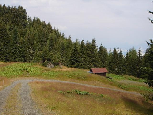 Foto: berglerin / Wander Tour / Steinberg, 1655m / 28.07.2009 21:02:15