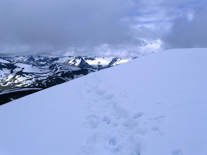 Foto: Andreas Koller / Wander Tour / Von Spiterstulen auf den Glittertind (2465 m) / Am Gipfel des Glittertind / 05.08.2009 18:50:38