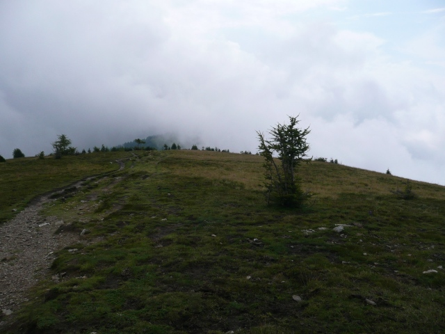 Foto: berglerin / Wander Tour / Palnock (1901m) / 03.08.2009 20:14:34