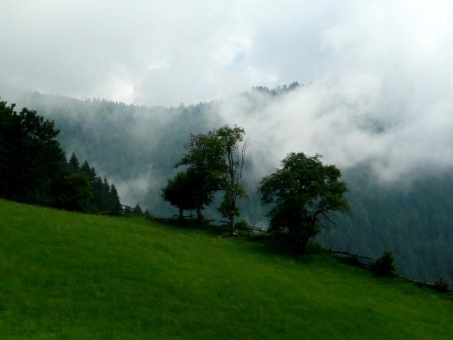 Foto: berglerin / Wander Tour / Palnock (1901m) / 03.08.2009 20:13:57