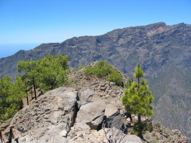 Foto: elipes / Wander Tour / Pico Bejenado / Am Pico Bejenado / 04.08.2009 12:22:01