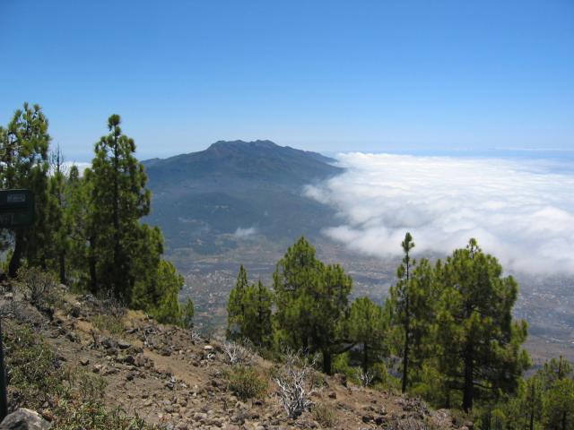 Foto: elipes / Wander Tour / Pico Bejenado / Blick nach El Paso / 04.08.2009 12:23:08