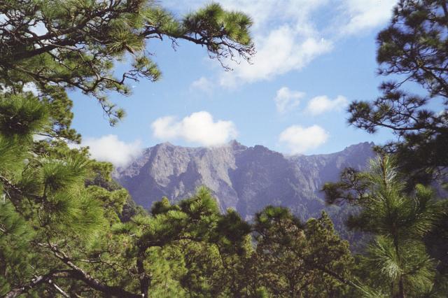 Foto: elipes / Wander Tour / Von Los Brecitos durch die Caldera / Blick zum Roque de los Muchachos / 11.08.2009 08:48:37