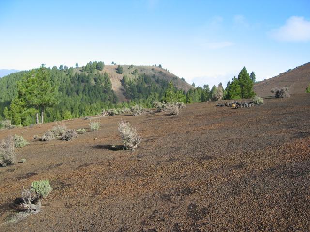 Foto: elipes / Wander Tour / Vulkanroute / Aufstieg beim Birigoyo / 04.08.2009 16:34:33