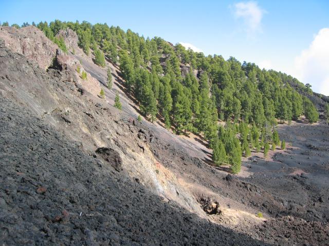Foto: elipes / Wander Tour / Vulkanroute / Lavawüste / 04.08.2009 16:36:55