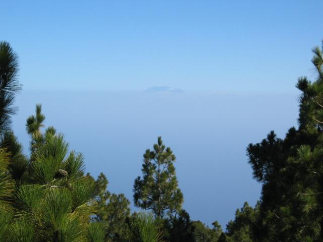 Foto: elipes / Wander Tour / Vulkanroute / Blick vom Nambroque zum Teide / 04.08.2009 16:42:04