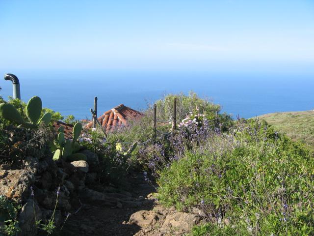 Foto: elipes / Wander Tour / Von Las Tricias zu den Buracas-Höhlen / Aufstiegsweg nach Las Tricias / 04.08.2009 21:51:15