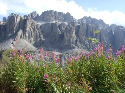 Foto: hofsab / Mountainbike Tour / Rund um die Sella über Grödner-, Sella- und Pordoijoch (2239 m) / der Sellastock / 26.08.2009 13:00:56