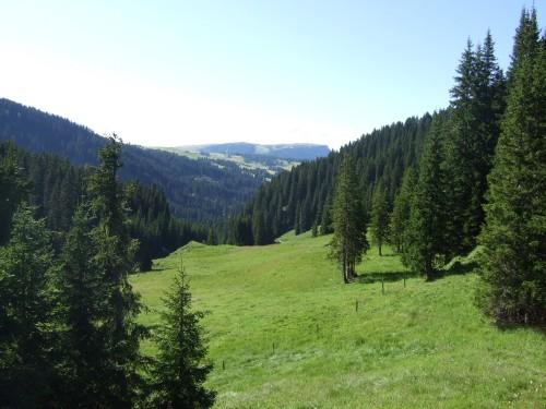 Foto: hofsab / Mountainbike Tour / Rund um den Langkofel über Col Rodela (2484 m) / 27.08.2009 21:37:20
